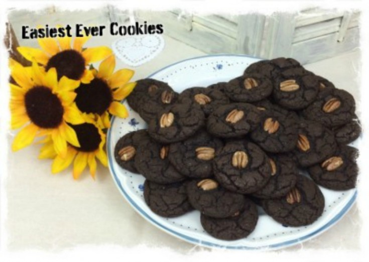 easy chocolate cake cookie