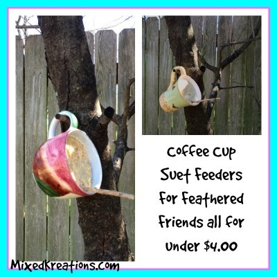 Coffee cup suet feeders