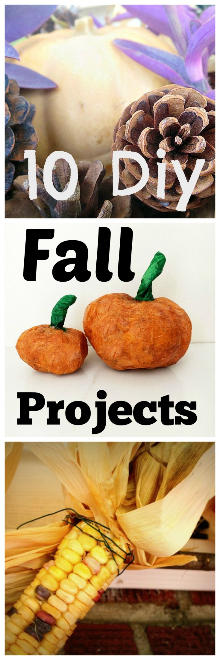 10 fall projects
